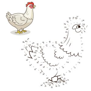 Chicken Connect the Dots Answer