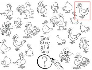 Find one of a kind Chicken Answer